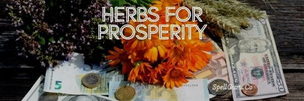 Herbs for Prosperity