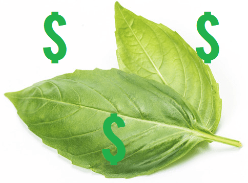how to use basil to attract money