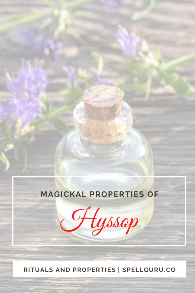 Hyssop magickal properties