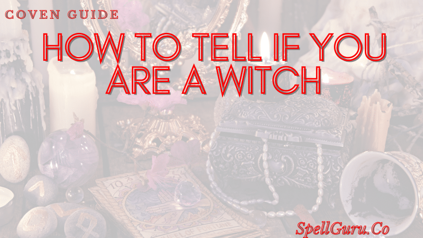 how to tell if you are a witch
