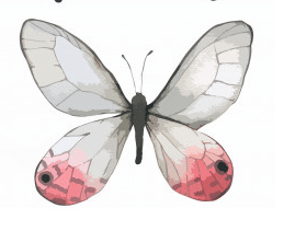 white butterfly symbolism
